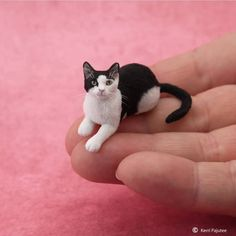 Artist Kerri Pajutee creates incredibly beautiful, real-looking animal sculptures that are to to actual size. Pajutee's remarkable attention to detail… Miniture Animals, Miniture Things, Felt Animals, Cute Animals, Clay Miniatures, Dollhouse Miniatures, Polymer Clay Cat, Cerámica Ideas, Clay Cats