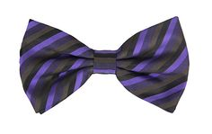 Striped Purple Bowtie and Hanky Set