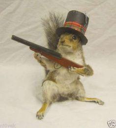 Anthropomorphic Taxidermy #hunting #taxidermy #squirrel