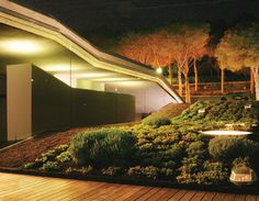 Green Roofs (21)