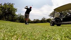 #golf #green #cobrapumagolf #México #clubdegolfsantafe Gopro Action, Golf Green, Golf Tips, Golf Courses, Gym Equipment, Mexico, Hero, Learning, Amazing