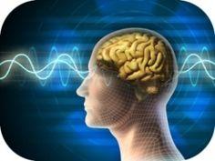 Abnehmen beginnt auch im Kopf, das ist allgemein bekannt. Der weiß oft sogar besser Bescheid als der Magen, behauptet der amerikanische Psychologe Brian Wansink.