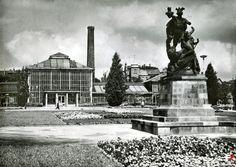 Palmiarnia - Greenhouse