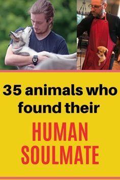 Just like wolves who hunt with the pack or just like sheep who move with the herd, other animals need someone or somebody they can trust and they can live with for the rest of their lives. These 35 animals found their human soulmate, and they are living comfortably with them and their family. Weird Facts, Fun Facts, Funny Quotes, Funny Memes, Hilarious, Laughing Therapy, Pregnancy Problems, Human Emotions, Good Jokes