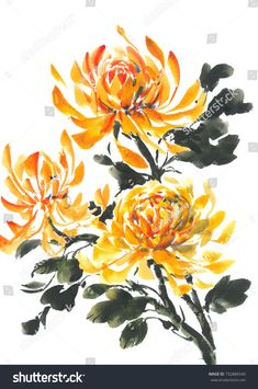 Find Yellow Chrysanthemum Bright Flowering Chrysanthemum Watercolor stock images in HD and millions of other royalty-free stock photos, illustrations and vectors in the Shutterstock collection. Watercolor Cards, Watercolor Background, Watercolor Flowers, Watercolor Paintings, Fabric Painting, Watercolour, Yellow Flower Tattoos, Yellow Tattoo, Bright Flowers