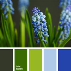 Free collection of color palettes ideas for all the occasions: decorate your house, flat, bedroom, kitchen, living room and even wedding with our color ideas | Page 404 of 417.