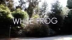 Cathy Thinking Out Loud: This week recommending #Movie called #WhiteFrog #W...