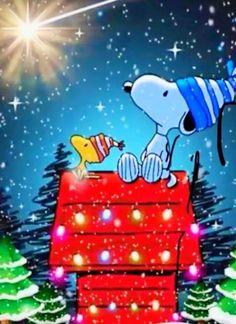 Ideas Funny Christmas Cards Friends Seasons - Funny,Funny memes,Funny pic,Funny world. Funny Christmas Pictures, Funny Christmas Cards, Christmas Art, Christmas Humor, Xmas, Funny Christmas Cartoons, Christmas Quotes, Snoopy Cartoon, Peanuts Cartoon