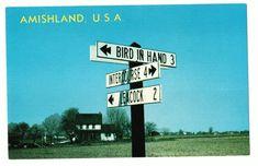 Undated Unused Postcard Amishland USA Street Sign Bird in Hand Intercourse PA