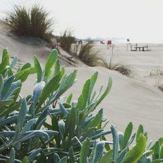 Playa de Mar de las Pampas por Gaby Casanovas