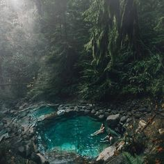 The incredibly beautiful Terwilliger hot springs, Oregon Photo Credit Dylan Furst. I want to go so bad! Oregon Travel, Oregon Road Trip, Oregon Hiking, Oregon Vacation, Travel Oklahoma, Oh The Places You'll Go, Places To Travel, Places To Visit, Travel Destinations