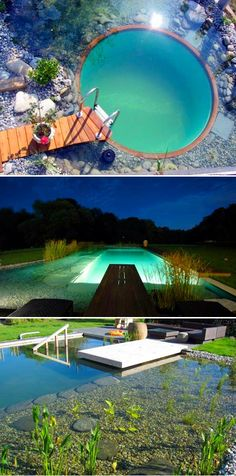 Learn to convert your existing swimming pool into a swimming pond.....less maintenance, no chlorine and beautiful.