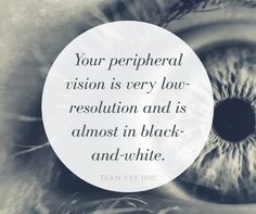 Did you know your peripheral vision is very low-resolution and is almost black-and-white?    Image credit: Schwartz Laser Eye Center