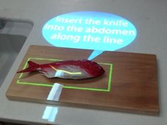 Give a man a fish, and you feed him for a day. Give a man a smart kitchen that projects cooking instructions on the fish and talks to him through a robot, and he'll be lazy for life. http://cnet.co/NL1ire
