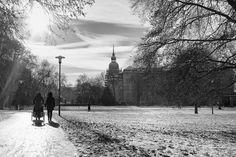 Winter in Darmstadt @Herrengarten by Birk Beutinger, via 500px
