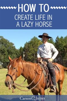 Here's a horse training exercise that will create life in your horse. Some horses are just naturally lazier than others. In this horse training tip you'll learn how to train your horse to be more lively in both his body and his mind.