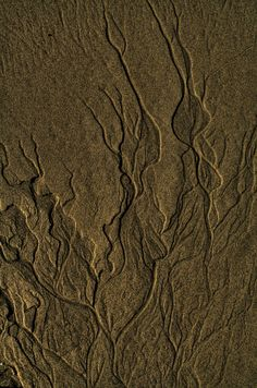 Sand Pattern by James Carrick