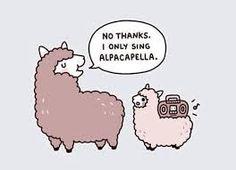 Image result for alpaca puns
