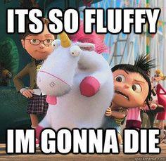 it's so fluffy!!