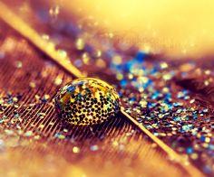 421 Best Sparkles And Glitter Images On Pinterest