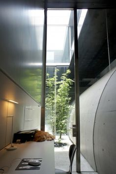 Tunnel House is a minimal house located in Tokyo, Japan, designed by Makiko Tsukada Architects. (19)