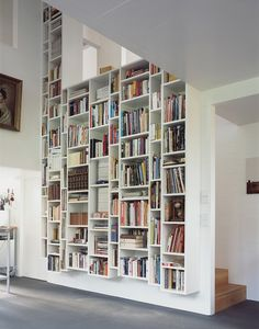 @Mary Curtiss, looks awesome but I'm not sure how you would get to the books on top.