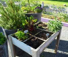 Sehen Sie, wie eine praktische Gartengestaltung auch ein Sehvergnügen sein kann - praktische gartengestaltung gewürze obst gemüse