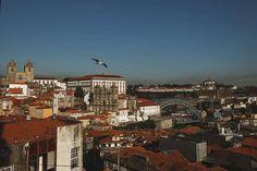 Индивидуальное фотопутешествие в Португалию