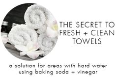 Try this all-natural alternative in this tutorial on how to get fresh smelling towels. Hard water and fragrances can make your towels smell like mildew.