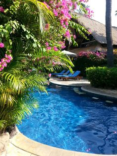 @Santai Amed Bali