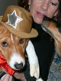 """How To Get Your Dog To Wear A Halloween Costume Or Other Clothes For Dogs"""