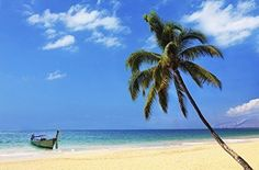 TROPICAL PARADISE POSTER Canoe on the Beach 1 RARE HOT NEW 24x36