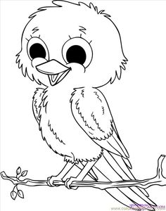 coloring pages how to draw baby birds step 8 animals birds