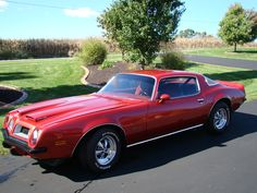 1975 Pontiac Firebird. My project car. When restored, will rival this.