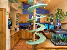 Aw, now I want 15 cats! Watch These Rescued Cats Make a House Their Playland - Spirals, catwalks, tunnels and platforms create a superhighway inside this home in Southern California