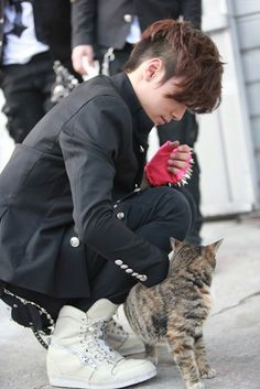 Jr with a cat has to be one of the cutest things in existence b6c7523c6e7f4104386df1876c4d9f1e.jpg (355×531)