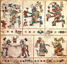 FAMSI - John Pohl - Libros Antiguos - El Grupo Borgia - Codice Fejervary Mayer