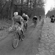 Raymond Poulidor - Paris-Roubaix 1969