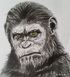 Caesar - Planet of the Apes by Lisa's Arty Creations