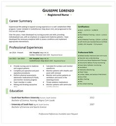 How To Make A Nursing Resume Nurse Resume Sample  Pinterest  Sample Resume Nursing Resume And .