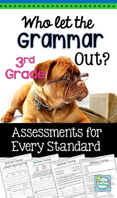 This packet contains grammar assessments targeting specific common core language standards for Grade 3. Each standard is noted on the assessment itself and the packet is organized in order for you by assessment. The assessments contain challenging questions both open ended and multiple choice to provide your students with opportunities to experience a wide array of testing formats.
