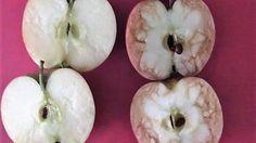 Schluss mit Mobbing: Mit zwei Äpfeln zeigt eine Lehrerin ihren Schülern, wie weh Mobbing tut