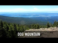 Dog Mountain hike at Seymour Mountain, North Vancouver, BC | Vancouver Trails