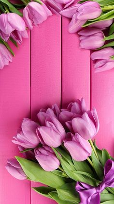 Trendy Flowers Wallpaper For Phone Iphone Pink Roses Natur Wallpaper, Frühling Wallpaper, Nature Iphone Wallpaper, Spring Wallpaper, Phone Wallpapers, Wallpaper Ideas, Pink Tulips, Tulips Flowers, Pretty Flowers