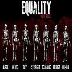 Equal insides.