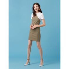 Short Sleeve Tailored Shift Dress