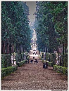 Boboli Gardens, Florence Italy... Amazing walk especially on a honeymoon ;)