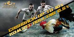 adu ayam, ayam online, judi sabung ayam, bandar sabung ayam, sabung ayam online…