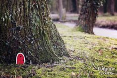 Fairy Door 'Bella' in Red, a beautiful fairy door for your fairy garden! These fairy doors look also super cute on trees!