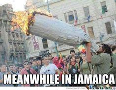 World record smoking biggest blunt   #worldrecordholder   #biggest   #smokingblunts